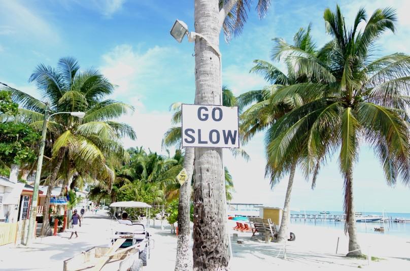 1.Go Slow