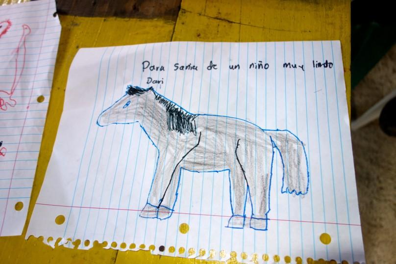 0.HorseII