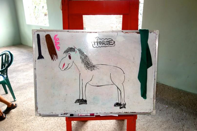 0.Horse