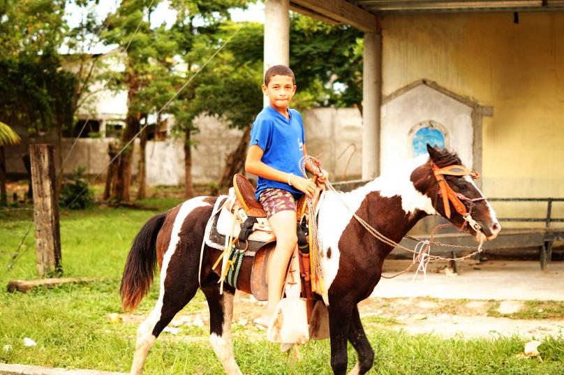 0.way_Horse