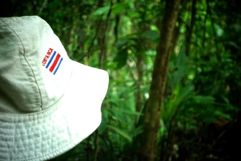 0.Hat_Jungle